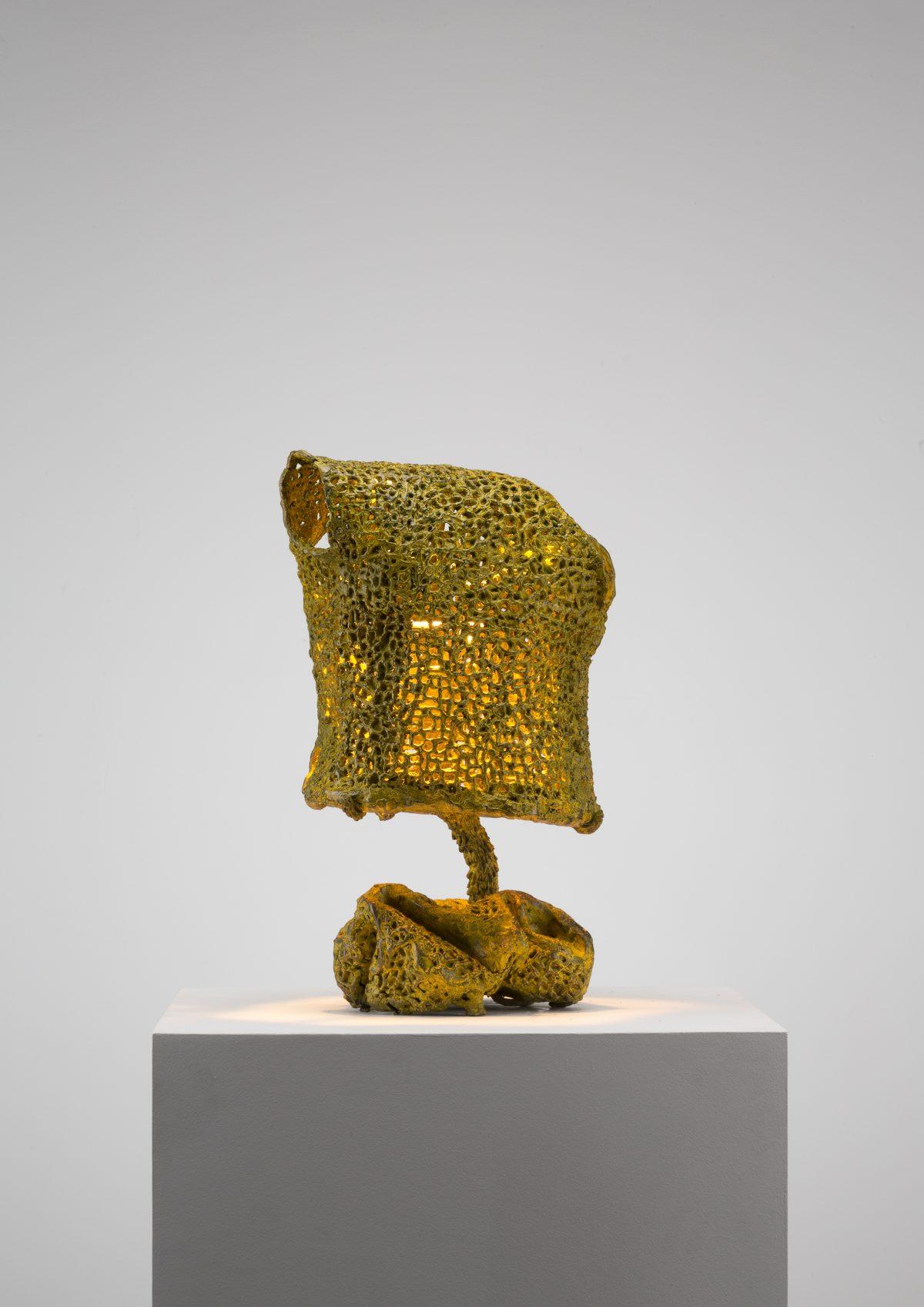 Yellow Light Bronze Mesh (117_2019)