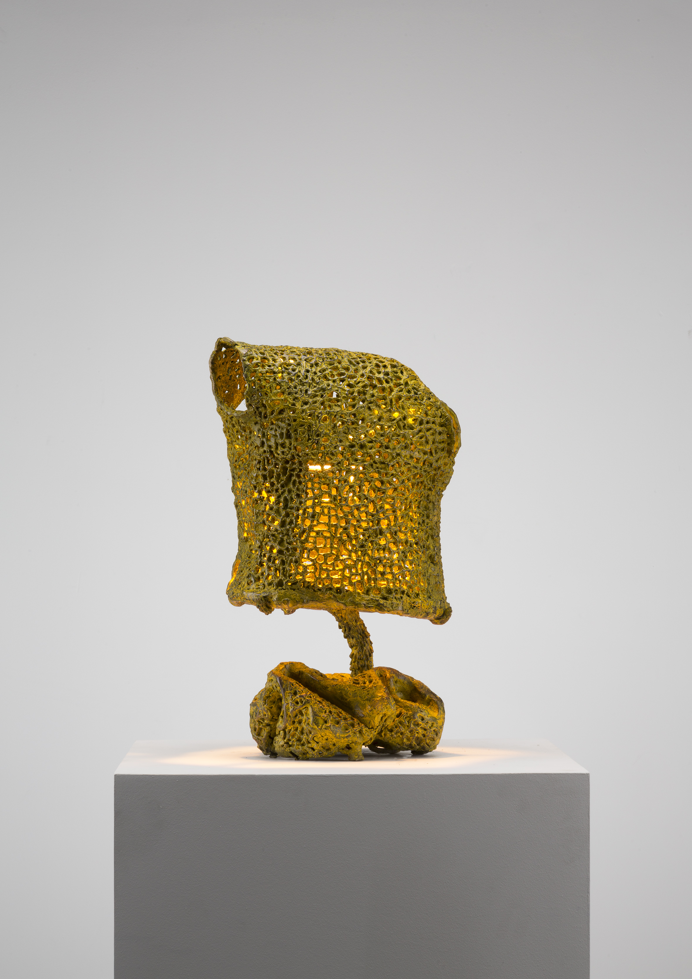 Yellow Light Bronze Mesh (117_2019)